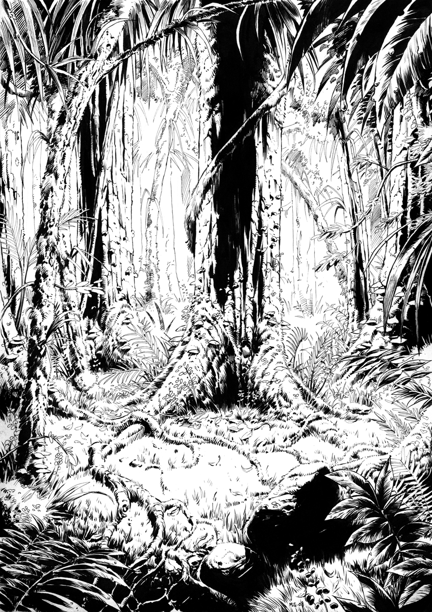 Jungle of Borneo, illustration for Azaya